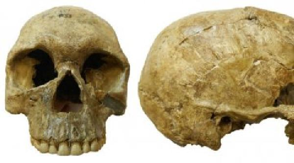 https://safirsoft.com 13,000-year-old skeletons reveal climate-driven warfare in ancient Sudan