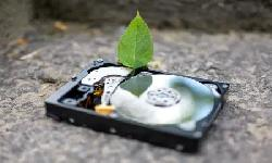 https://safirsoft.com Seagate and Western Digital increase HDD production as Chia sends sales skyrocketing