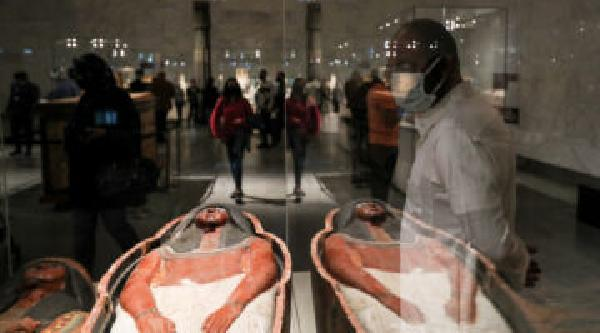 https://safirsoft.com Thorny Ethics for Public Display of Egyptian Mummies