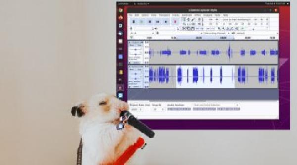 https://safirsoft.com No, Audacity Audio Editor is not a free