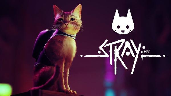 https://safirsoft.com Stray is an interesting cat simulation game coming to PlayStation and PC early 2022