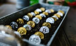 https://safirsoft.com If your stimulus check invested in cryptocurrency, how much money would you make today?
