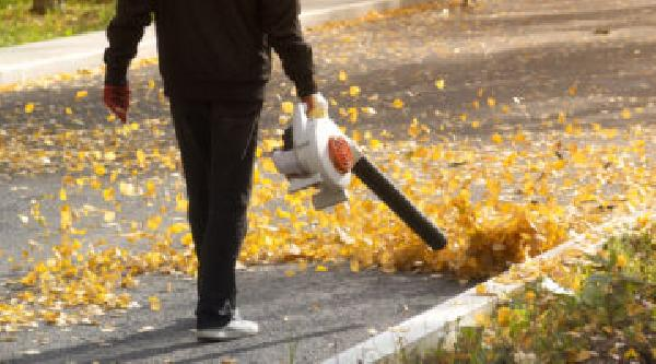 https://safirsoft.com Under California law, gas-fueled lawn mowers and leaf blowers are prohibited